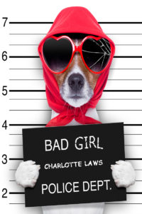 Charlotte Laws is a rebel, maverick, and change agent